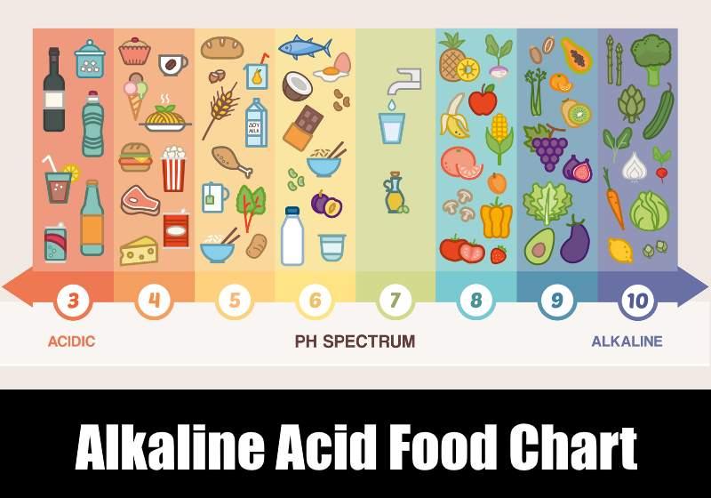 Alkaline Acid Food Chart  pH Foods Lists KitchenSanity