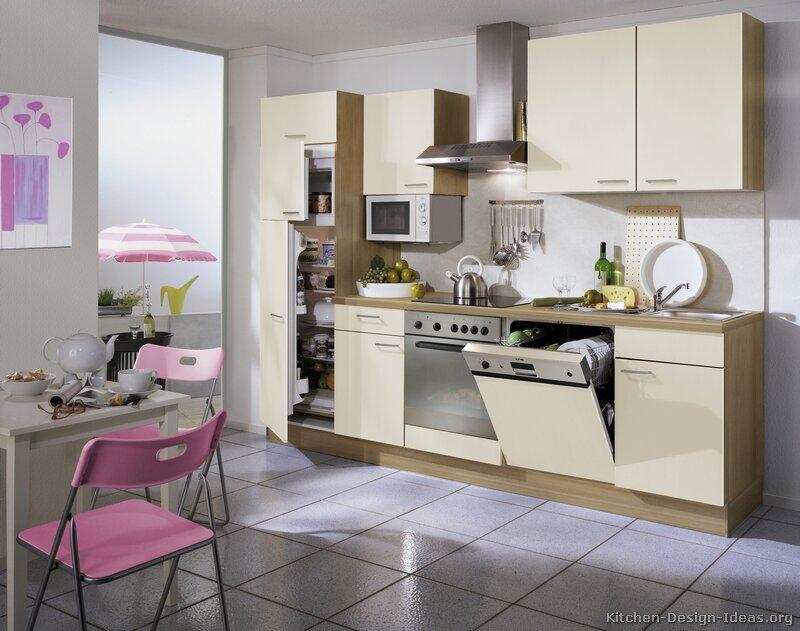 european kitchen cabinets pictures design ideas small modern kitchen design ideas remodel pictures houzz