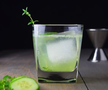 gin fizz1