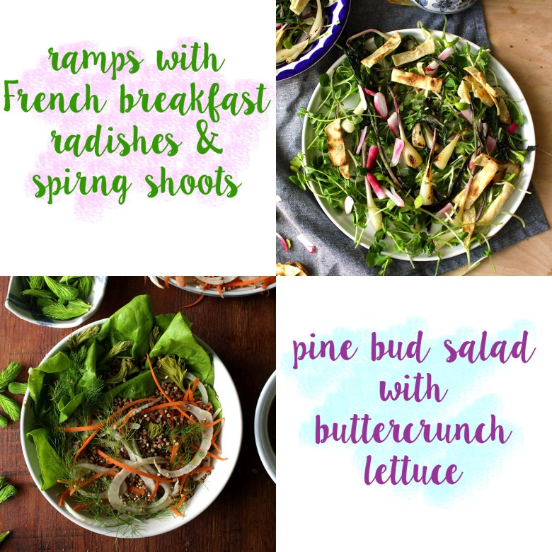 do you love a seasonal salad?! so do I! here are some great ways to showcase late spring/early summer produce