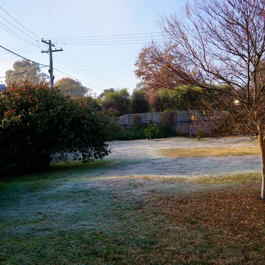 Canberra Today Canberra Frosty Mornings Kitlaughlin