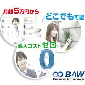 クラウド型販売在庫管理システム BAW(Business Active Ware)