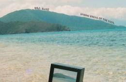 bill-baird-spring-break-of-the-soul