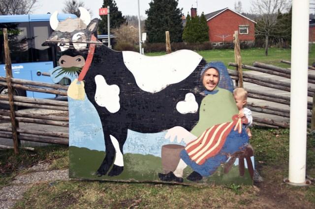 Utanför Falkbygdensost i Falköping hittade Smilla och pappa en kossa att mjölka