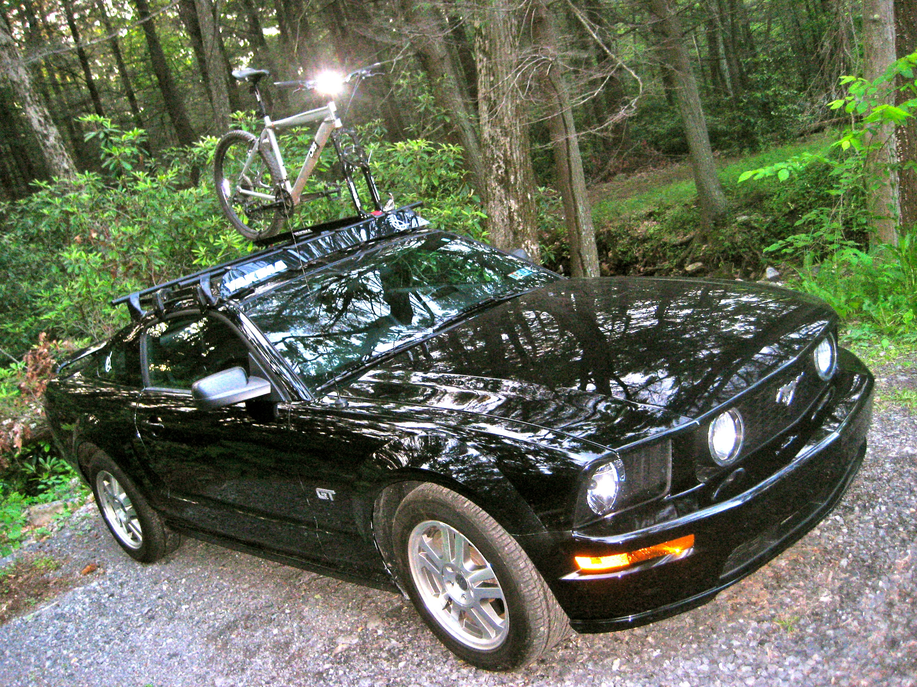 You Put A What On A What A Roof Rack On A Mustang