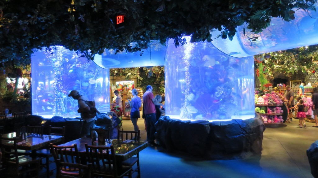 Lake Zurich Travel Rainforest Café–disney Springs Orlando – Kmb Travel Blog