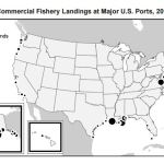 commercial-fishery-landings-2015