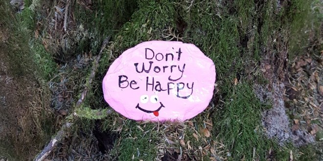 Painted Rocks Beautify Kodiak, Engage Families