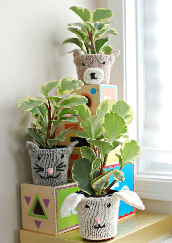 Animal Plant Cozies   knittedbliss.com