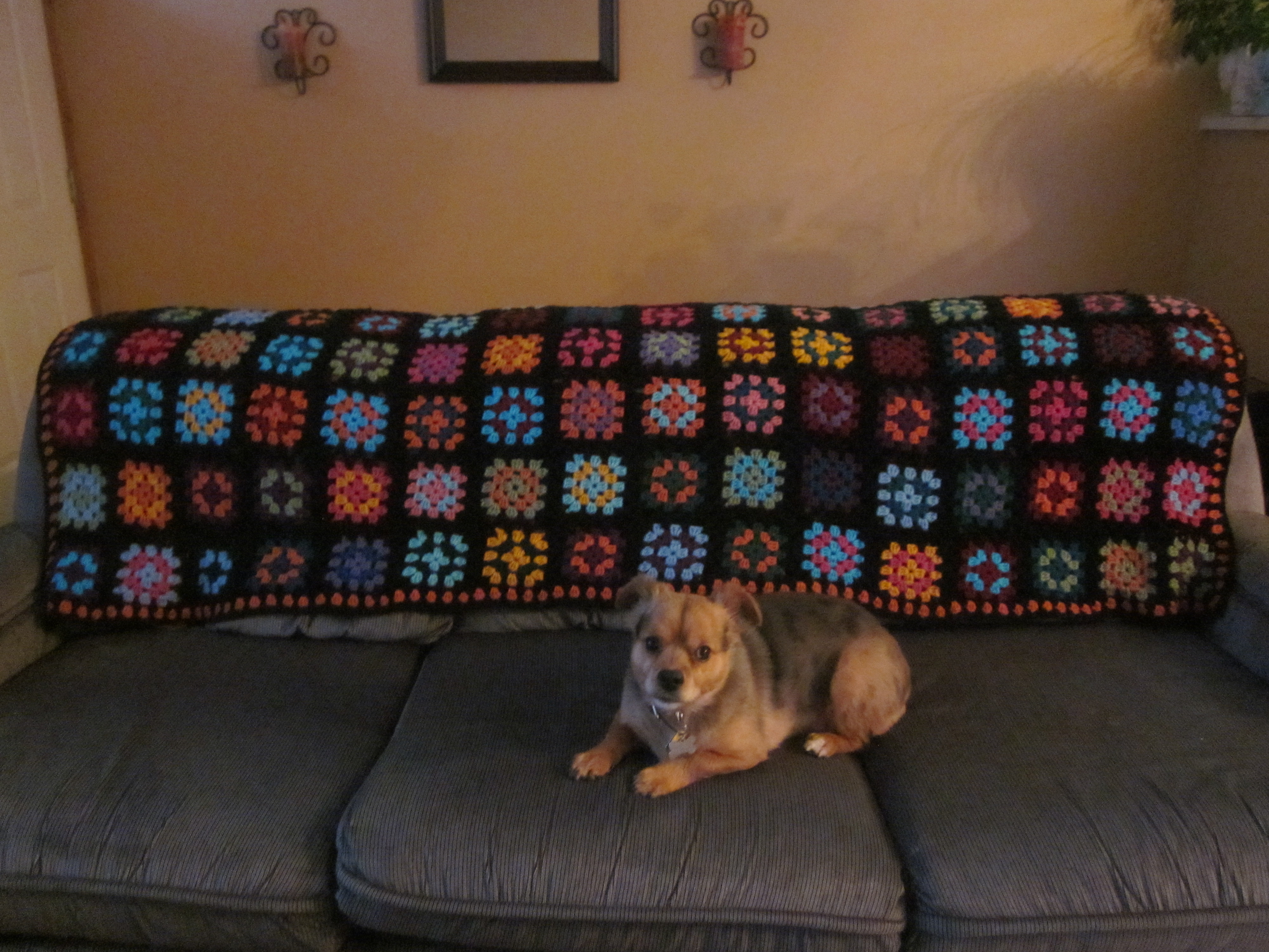 Big Couch Throw Big Bang Theory Inspired Afghan A Simple Stitch