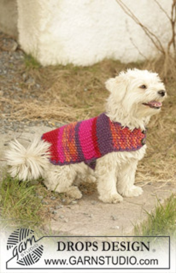 Free Knitted Dog Patterns : 7 Knitting Patterns For Your Pet   Knitting