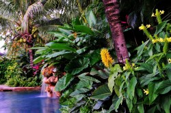 Small Of Florida Landscaping Ideas