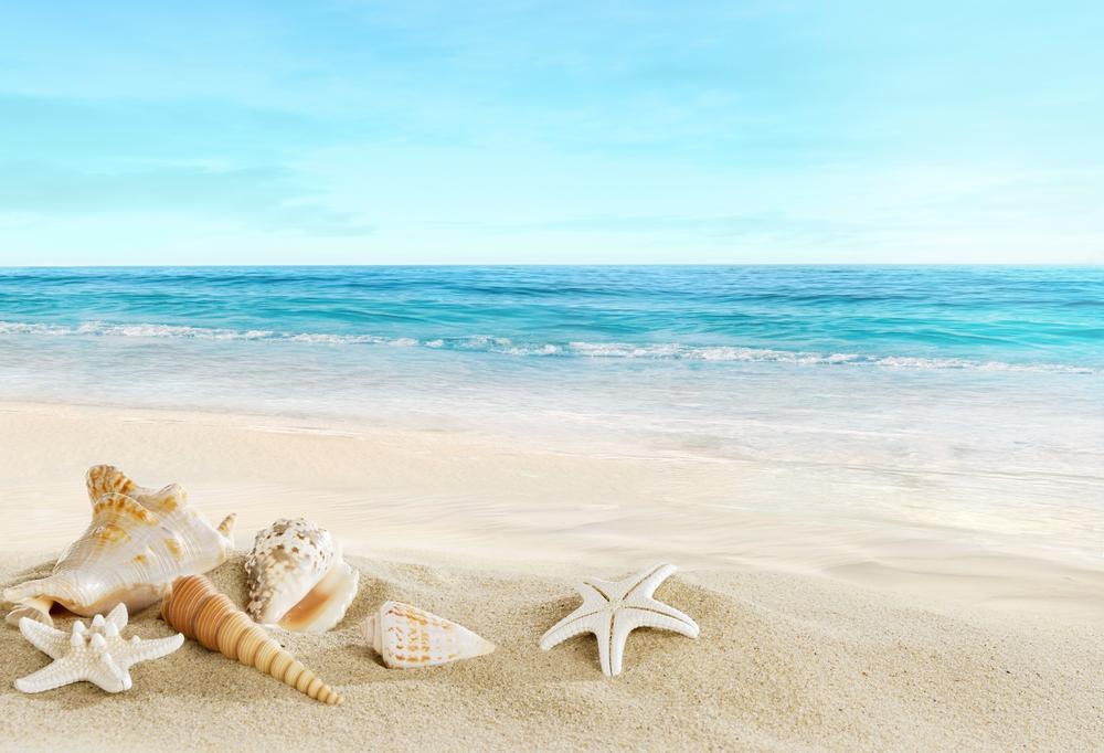 La Playa La Terapia Mas Completa Knowi