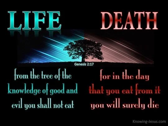 Word Of God Quotes Wallpaper Genesis 2 17 But From The Tree Of The Knowledge Of Good