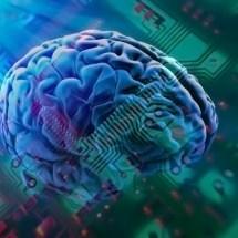 Towards A Better Brain Model