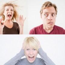 The amygdala: a full brain integrator in the face of fear