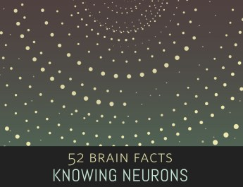 1_Galaxy_2_Cover_Knowing-Neurons
