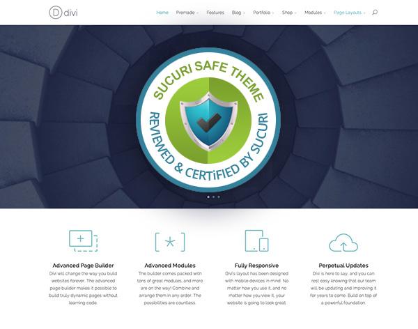 Divi WordPress Theme Security