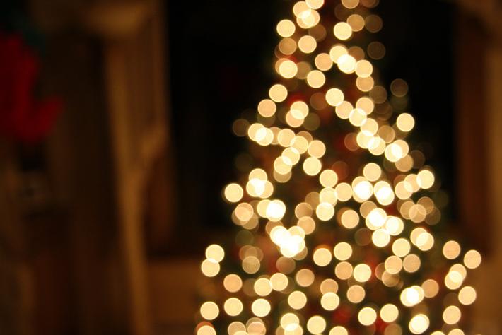 christmas-tree by Ashley Williams