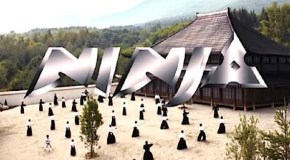 Movie: Ninja (2009) starring Scott Adkins, Tsuyoshi Ihara and Mika Hijii