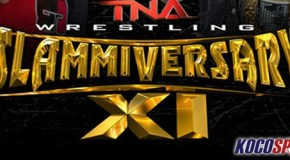 The Two Sheds Review: TNA Slammiversary XI