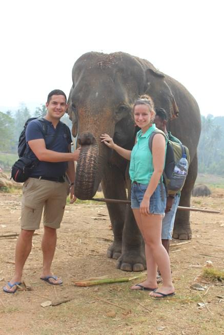 Bij de olifanten!
