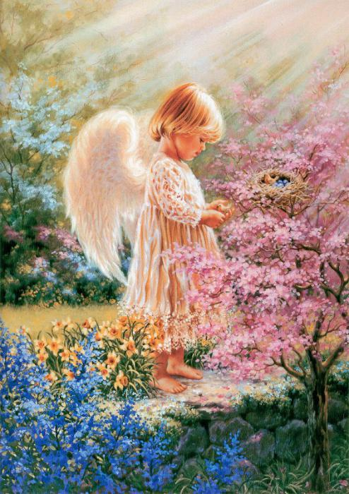 Awesome Animal Wallpapers Cute Little Angels Wallpapers My Blog