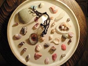 黒澤さんが焼いたお皿と湘南産の貝殻