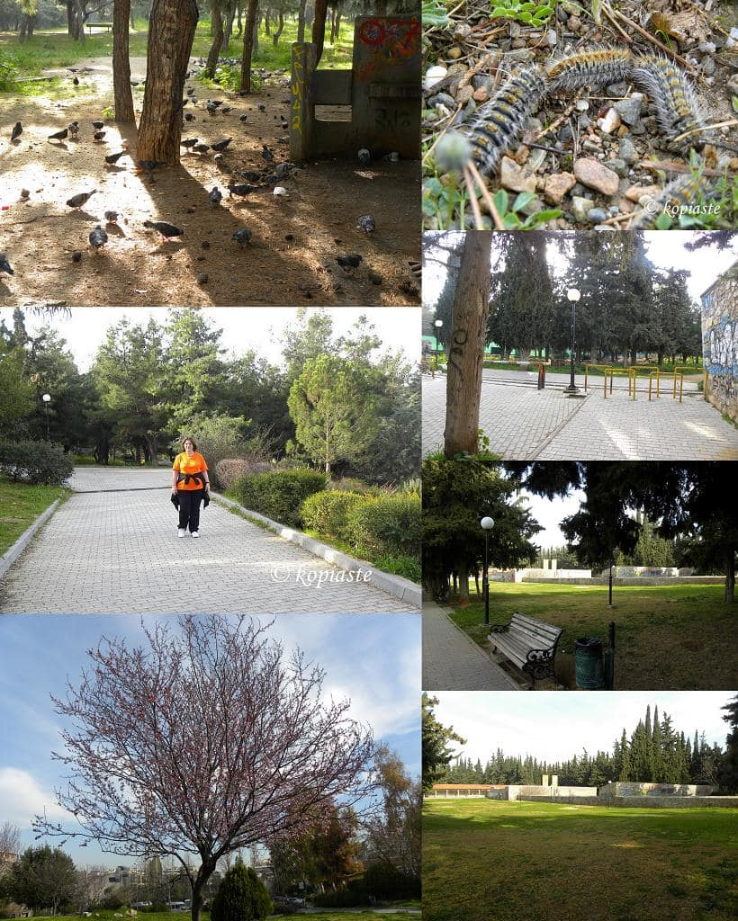 Collage Kessariani PARK1