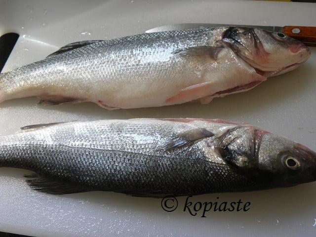 Lavraki - sea bass