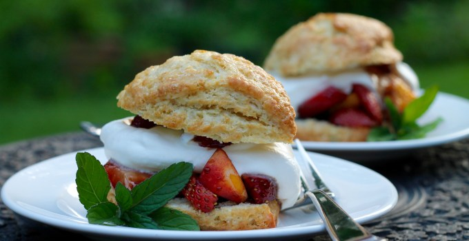 Sourdough Scones {Strawberry Nectarine Shortcakes with Balsamic Syrup}