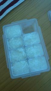 お粥 冷凍