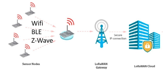 Wireless local network + LoRaWAN