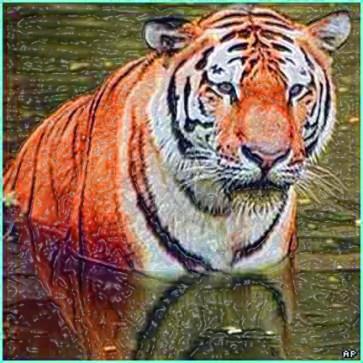wild_tiger2.jpg