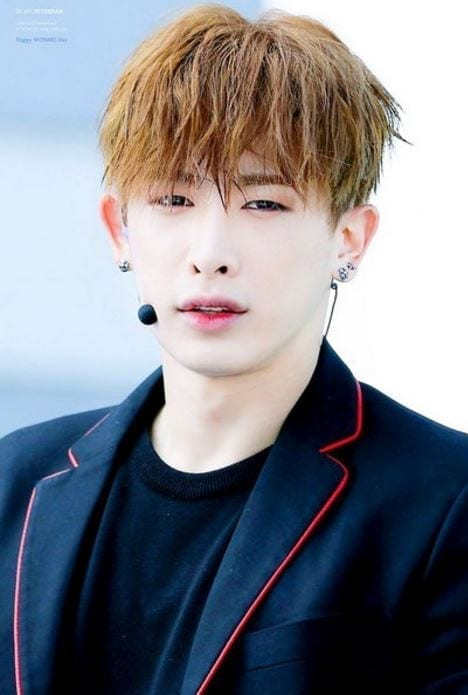 Cute Ulzzang Wallpaper Wonho Facts And Profile Wonho S Ideal Type Updated