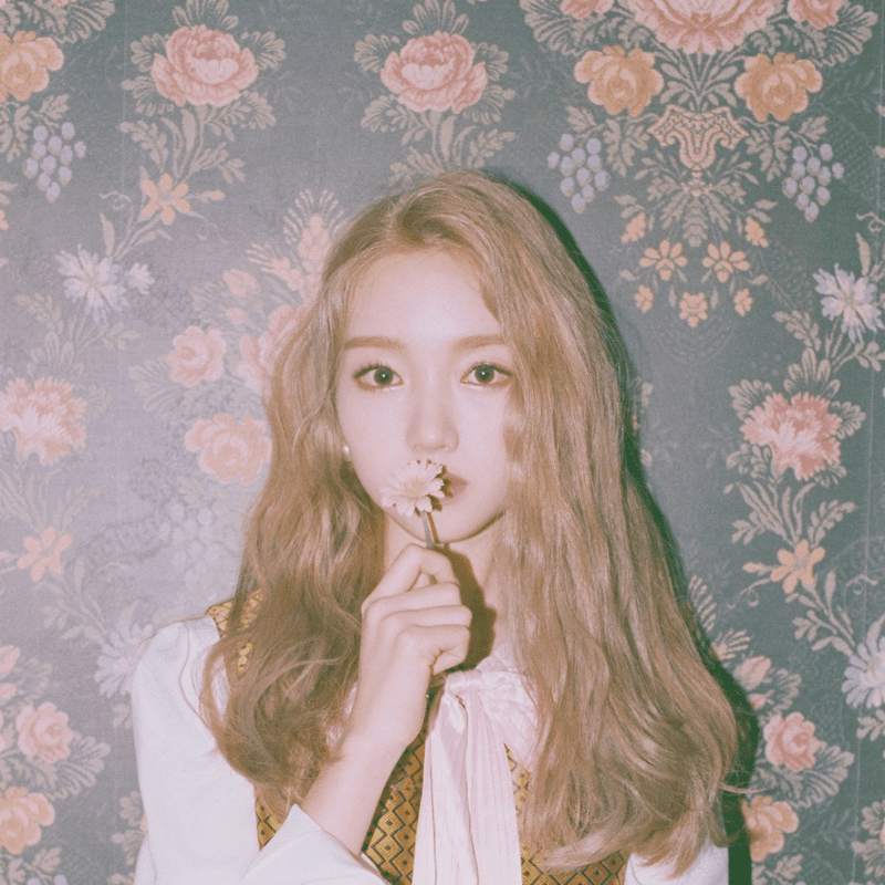 Cute Boy Wallpaper In Hd Gowon Loona Profile And Facts Updated