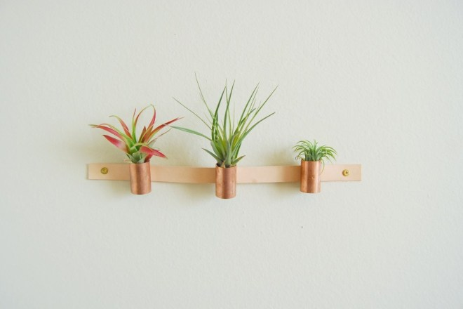 Leather Copper Air Plant Holder