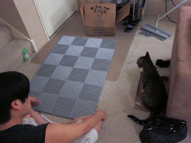 litter mat Kraftsy Kitties