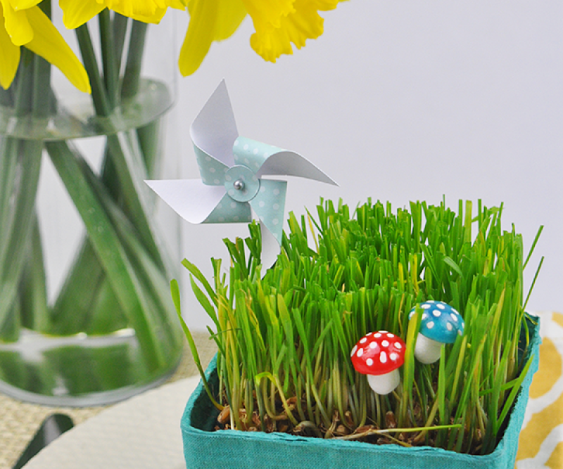 Spring grass table decoration