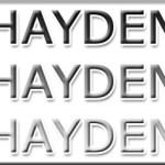 HAYDEN-300