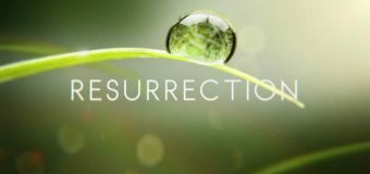 Resurrection by Gareth Lee | Krazed Writers