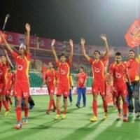 Ranchi Rays are the Champions of Hero Hockey India League 2015, Delhi Third