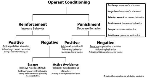 Behaviorism and Social Learning - EDPR 2111