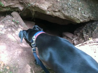 Deep hole into the mine and was shooting cold air like a natural air conditioner. Lucy liked it.
