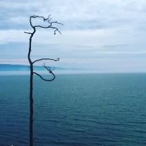 Baikalsee Ufer
