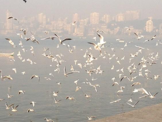 Good morning, Mumbai!