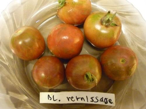 Medium Of Black Vernissage Tomato