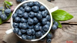 Blueberry - food.ndtv.com