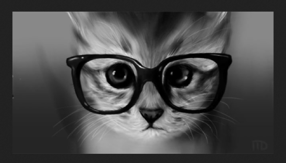cats glasses 1