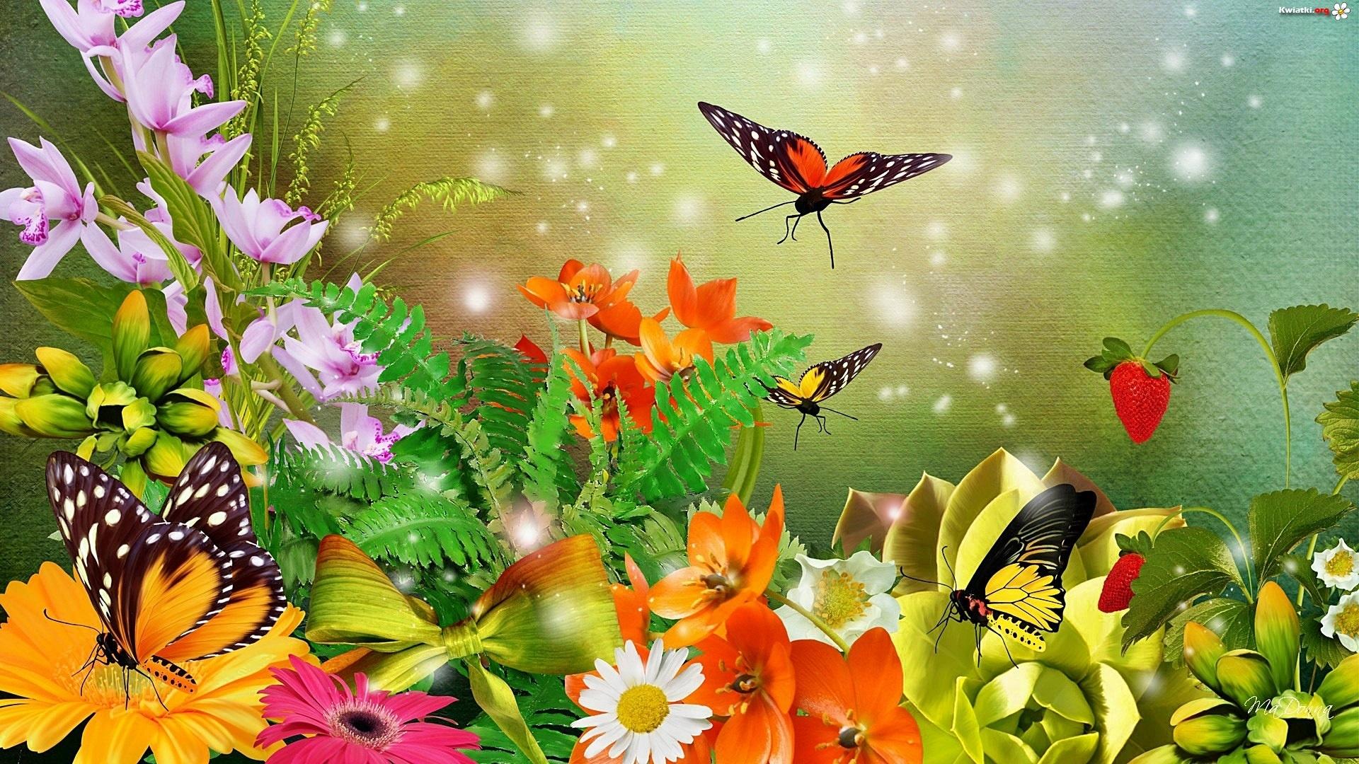 Tinkerbell Fall Wallpaper Kolorowe Kwiaty Motyle Art Zdjęcia
